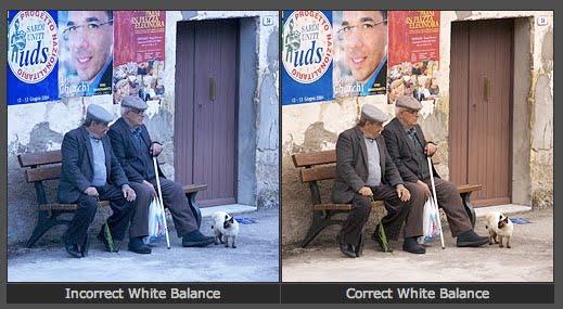 Manually set camera's white balance