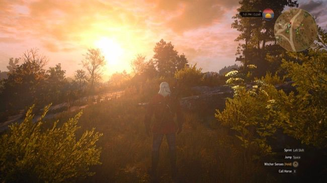 """The Witcher 3 with """"Ultra"""" graphics settings."""
