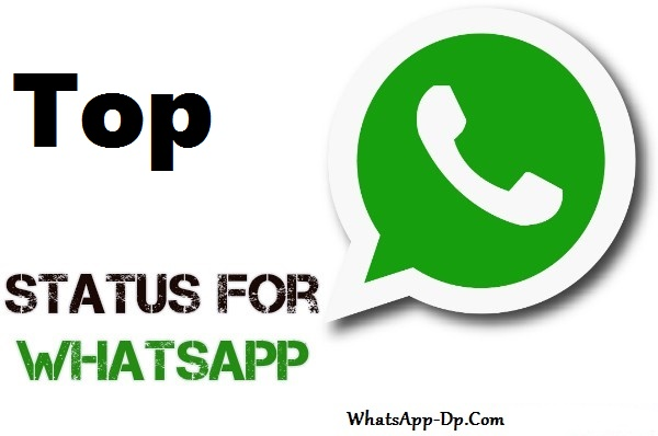 Whatsapp DP Status With Quotes 2021 [Latest Collection]