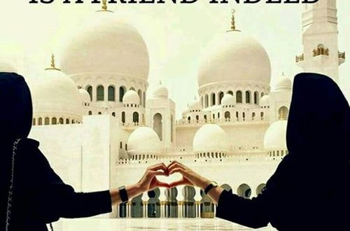 25+ Islamic Friendship Quotes For Best Friends