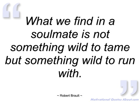 Wishes of the soulmate