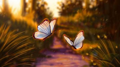 Wallpaper Beautiful Btterflies Flying Together+ Download Wallpapers