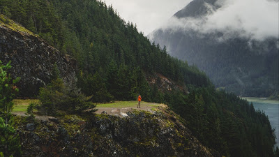 Wallpaper lonely man, nature, forest, hill, travel+ Download Wallpapers