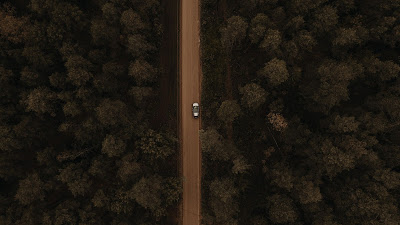 Drone Aerial Shot, Forest, Trees, Car, Road+ Download Wallpapers