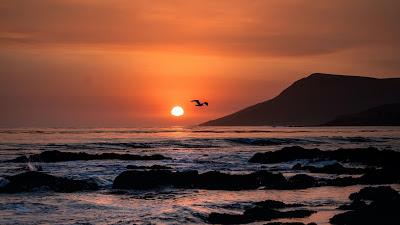 Wallpaper Sunset, Birds, Sea, Horizon, Rocks, Beach+ Download Wallpapers