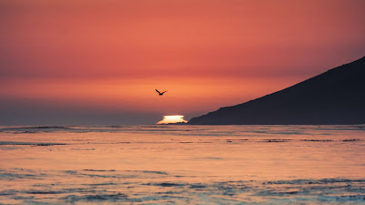 Sea, Sunset, Waves, Mountain, Bird, Beach+ Download Wallpapers