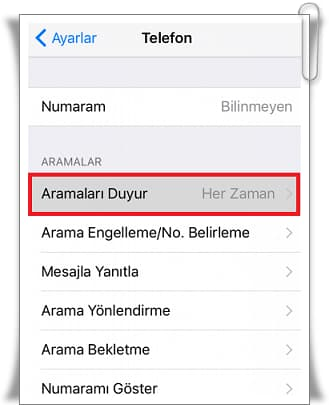 How to Turn on Caller Name on iPhone?
