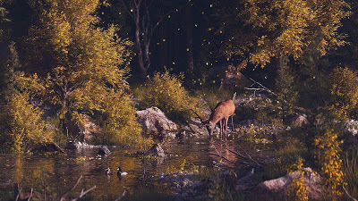Screen background for free lone deer in the autumn forest+ Download Wallpapers