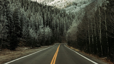 Wallpaper free snow, winter, road, asphalt, forest, trees+ Download Wallpapers