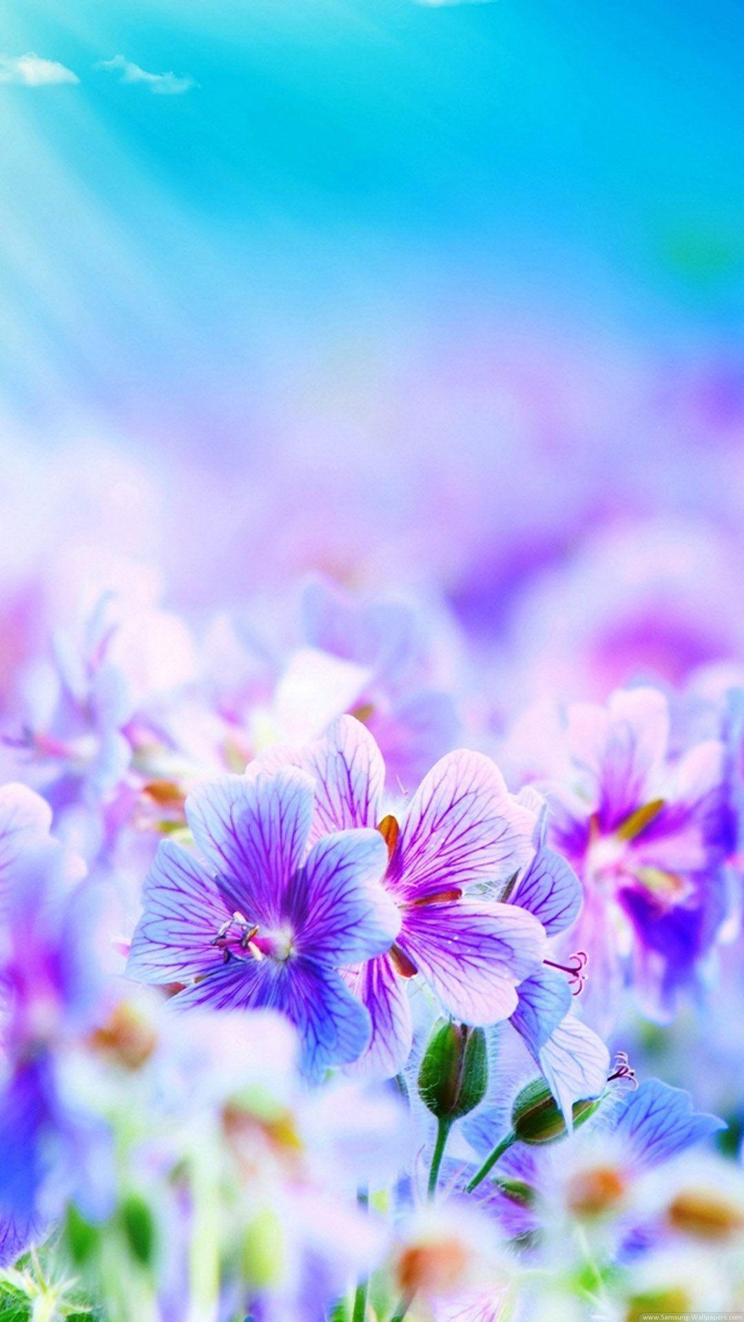 Beautiful desktop wallpaper– HD HQ Wallpapers Download