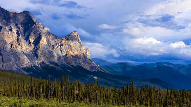 Wallpaper mountains, relief, forest, trees, landscape+ Wallpapers Download