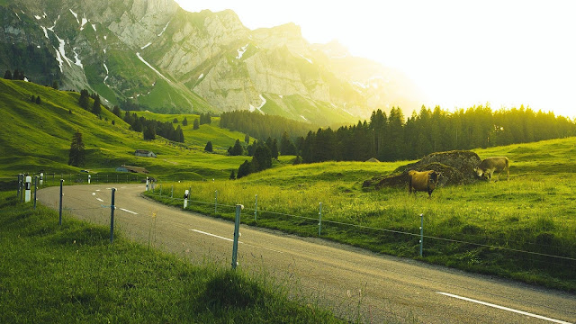 Countryside, East, Mountains, Road, Field+ Wallpapers Download