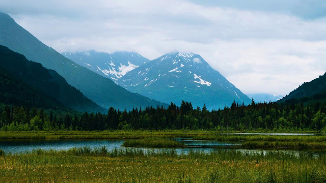 Wallpaper lake, mountains, forest, landscape+ Wallpapers Download