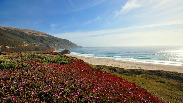 Landscape, Sea, Coast, Mountains, Field, Flowers+ Wallpapers Download