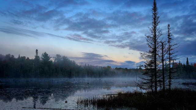 Early morning wallpapers, lake, forest, landscape+ Wallpapers Download
